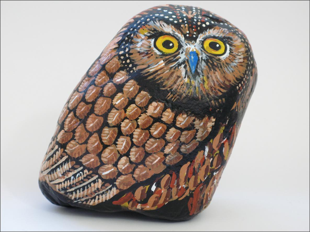 Surprised Owl   --  Buho Sorpresa
