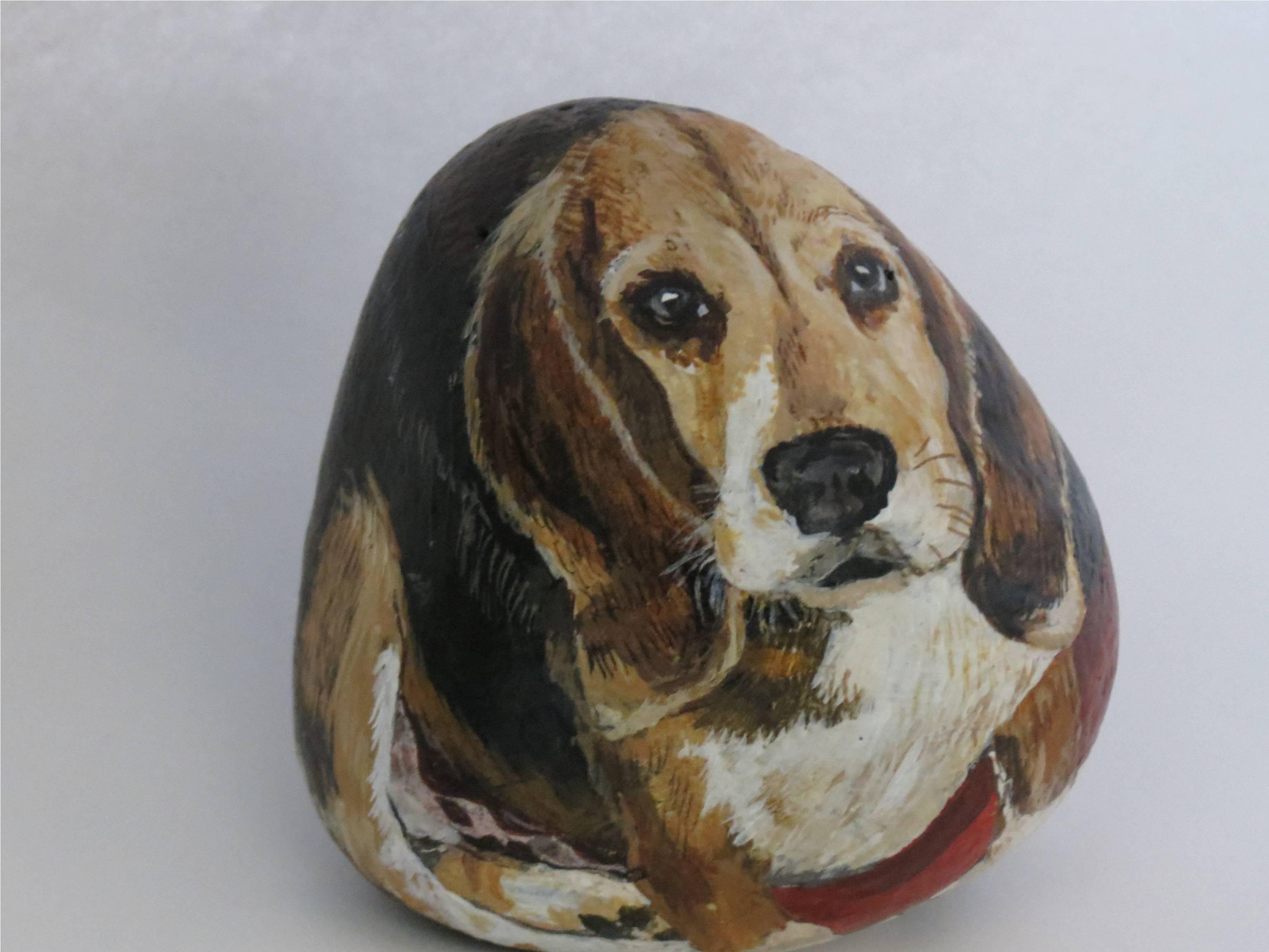 Beagle TOBY